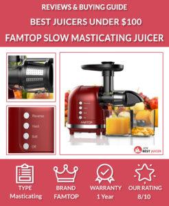 FAMTOP Masticating Juice Extractor Review - best juicer under $100
