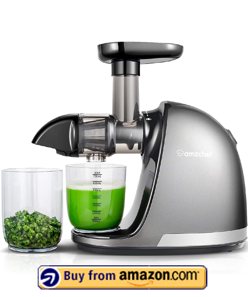 AMZCHEF Slow Juicer Extractor - Best Vegetable Juicer 2021