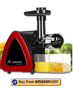 Aobosi Slow Masticating juicer - Cheap Masticating Juicers 2021