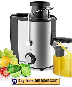 Bagotte Fruit and Vegetable Juicer - Best Celery Juicers 2021