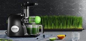 Best Masticating Juicers 2021 - Buyer's Guide