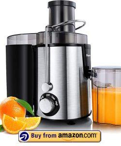 Sagnart Juicer Machines - Best Fruit Juicer 2021