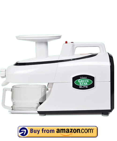 Tribest GSE-5000 Greenstar - Best Cold Press Masticating Slow Juicer