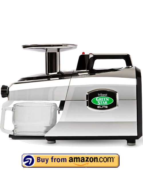 Tribest GSE-5050 - Best Masticating Juicer For Detox 2021